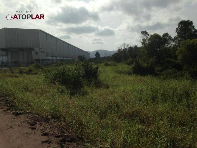 Terreno à venda, 300 m² por R$ 130.000,00 - São Domingos - Navegantes/SC - Foto 3