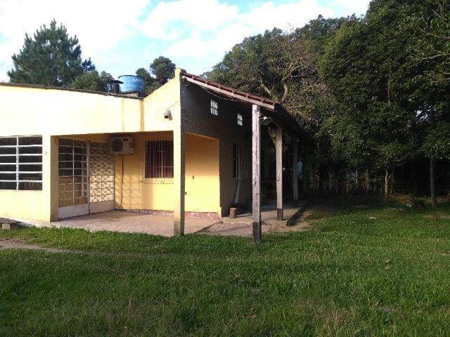 Vendo chácara bem localizada - Foto 4