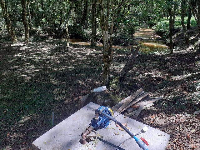 Chacara em mandirituba troco por casa na região de curitiba - Foto 7