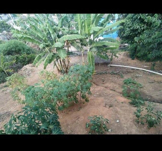 Linda casa com quintal em Jardim de alah - Foto 6