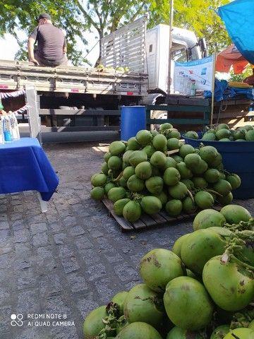 Coco verde direto do produtor - Foto 2