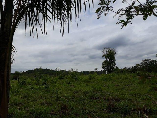 Chácara Em Araquari - Foto 4