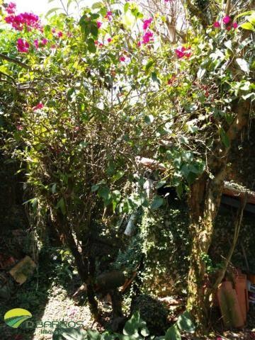 Oportunidade - tremembé - flor do campo - 2 casas em 1 - 4 dorms - 1 suite - 2 salas - 3 v - Foto 13