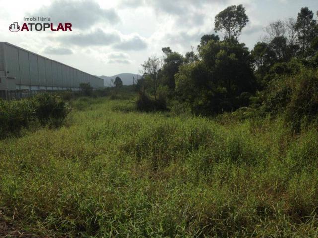 Terreno à venda, 300 m² por R$ 130.000,00 - São Domingos - Navegantes/SC - Foto 2