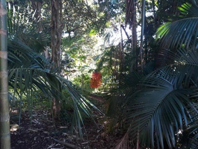 Terreno à venda, 660 m² por R$ 650.000,00 - Região do Lago 1 - Cascavel/PR - Foto 7