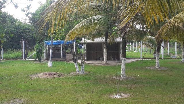 Vendo Terreno (Mini Sitio) em Itaguaí/RJ - Foto 18