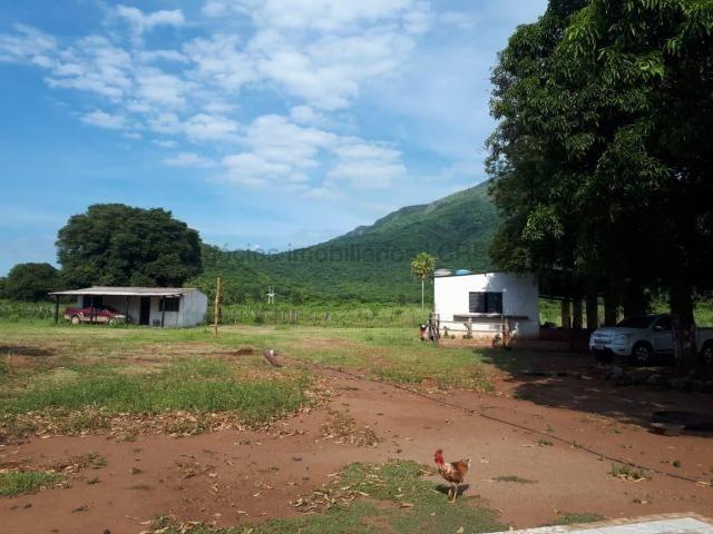 Fazenda à venda, 4 quartos, Centro - Corumbá/MS - Foto 2