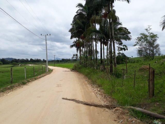 Chácara Em Araquari - Foto 6