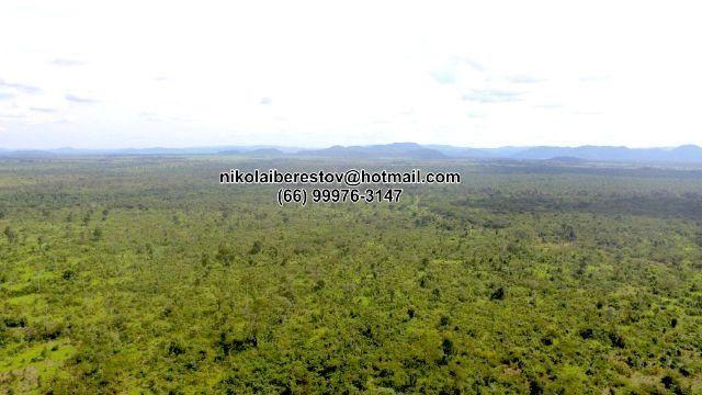 Fazenda mais barata de mt 7.100 hectares centro norte mt