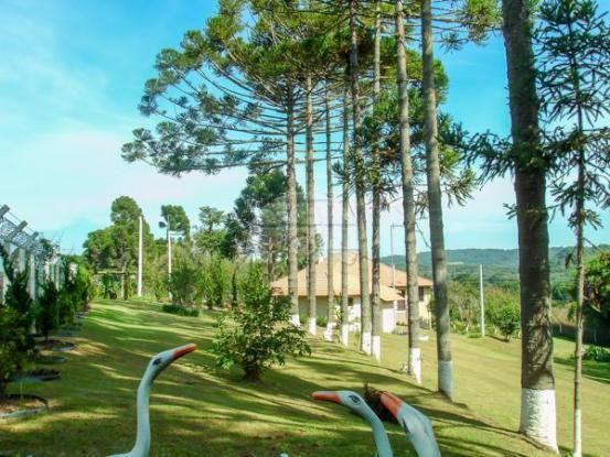 Chácara à venda em Capão alto, Lapa cod:141314 - Foto 9