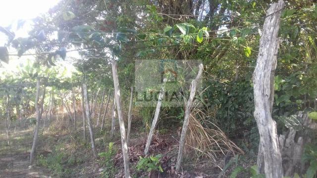 Sítio em Chã Grande com 9,2 hectare (Cód.: ho857) - Foto 20