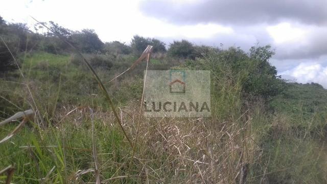 Sítio em Chã Grande com 9,2 hectare (Cód.: ho857) - Foto 10