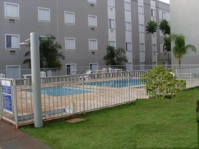Apartamento para alugar com 2 dormitórios em Vila pompeia, Ribeirao preto cod:L123920 - Foto 12