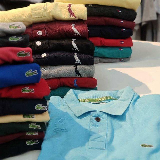 Camisas Polo reserva,tommy e lacos