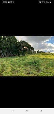 Chacara bem localizada em Apucarana  - Foto 3