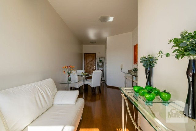 Apartamento à venda com 2 dormitórios em Minas brasil, Belo horizonte cod:332743