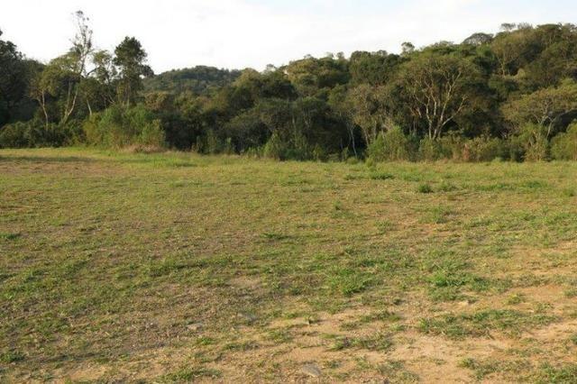 Terreno para Venda, São Bento do Sul / SC, bairro Rio Vermelho Estação - Foto 10