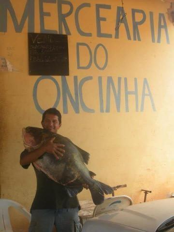 Chácara em Barro Alto Goiás - Foto 4