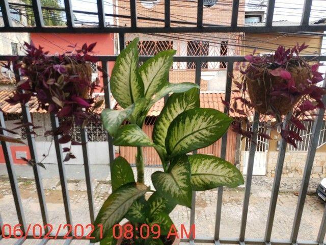 APARTAMENTO 3/4 EM ILHÉUS  - Foto 6