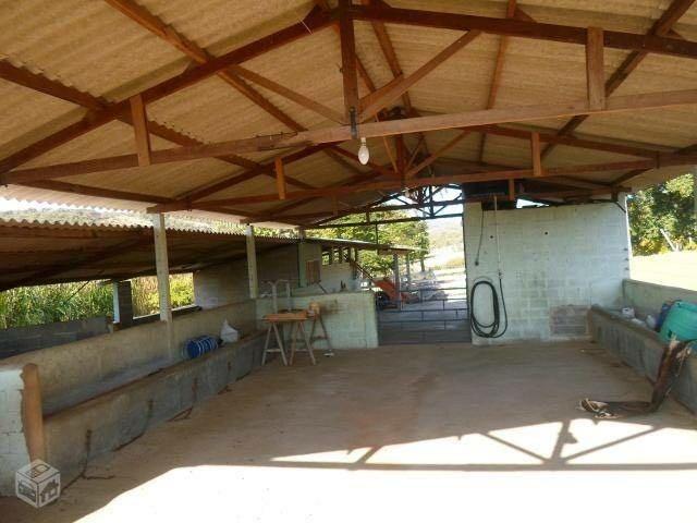 Fazenda com 22,4 alqueires paulista em Passos, MG permuta - Foto 4