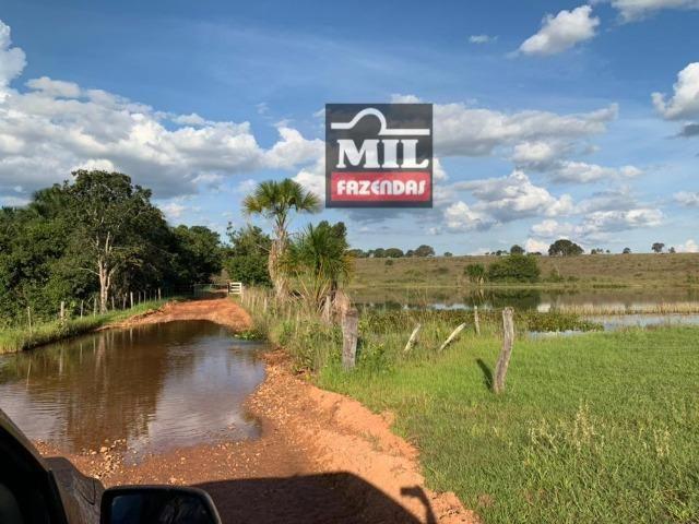 Fazenda dupla apitidão 200 Alqueires ( 968 hectares ) Itajá-GO - Foto 8