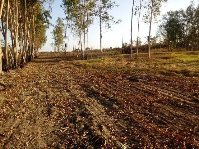 Vendo uma área de 6 hectares distrito, apos o hotel pantanal