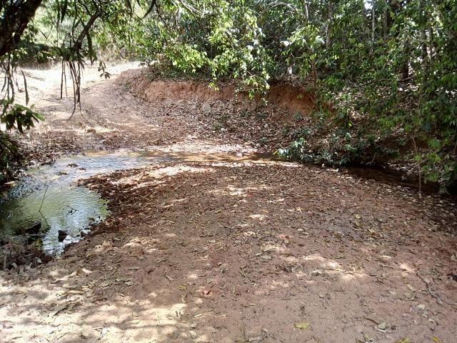 Venda de Fazenda, 650 hectares, Guiratinga - MT - Foto 11