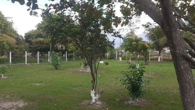 Vendo Terreno (Mini Sitio) em Itaguaí/RJ - Foto 13