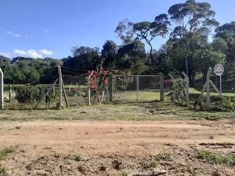 Chacara em mandirituba troco por casa na região de curitiba - Foto 2