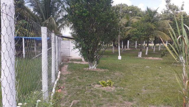 Vendo Terreno (Mini Sitio) em Itaguaí/RJ - Foto 6