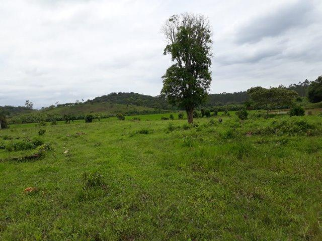 Chácara Em Araquari - Foto 2