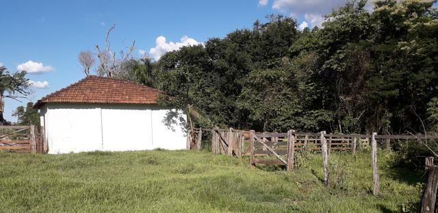 Chácara à venda de 1 alqueires e meio no município de Firminópolis - Foto 14