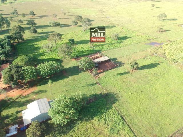 Fazenda dupla apitidão 200 Alqueires ( 968 hectares ) Itajá-GO - Foto 17