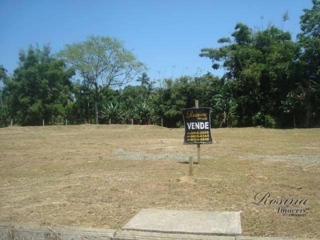 Òtimos terrenos para investimento em morretes - Foto 8