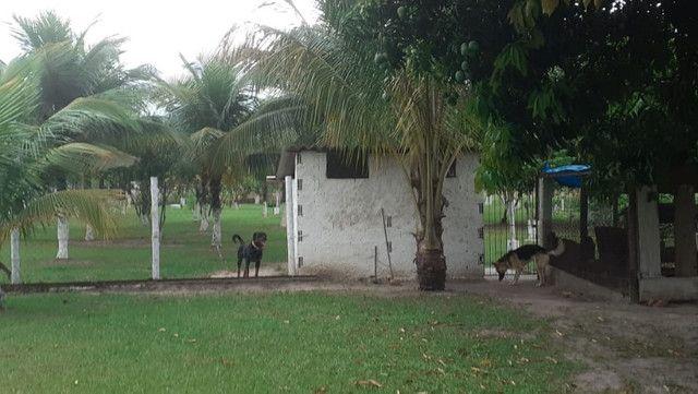 Vendo Terreno (Mini Sitio) em Itaguaí/RJ - Foto 2