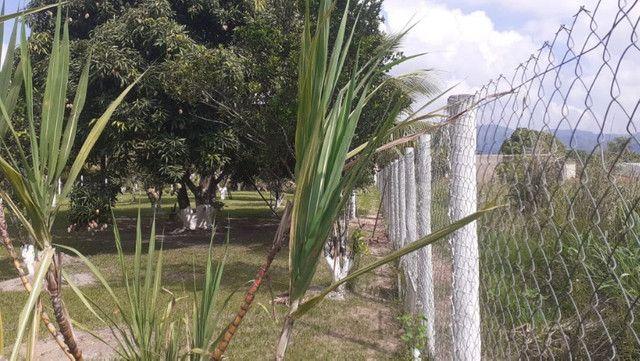 Vendo Terreno (Mini Sitio) em Itaguaí/RJ - Foto 5