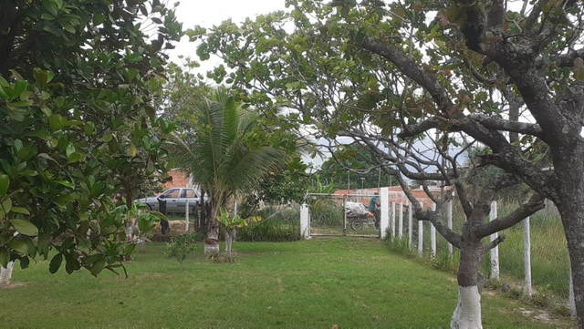 Vendo Terreno (Mini Sitio) em Itaguaí/RJ - Foto 9