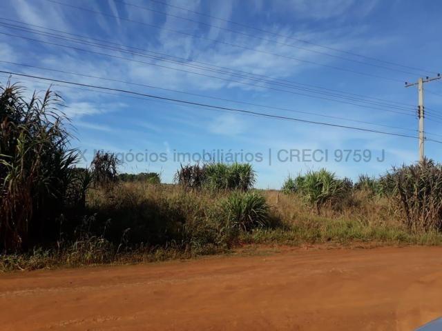Grande oportunidade para investidores - São Gabriel do Oeste/MS - Foto 5