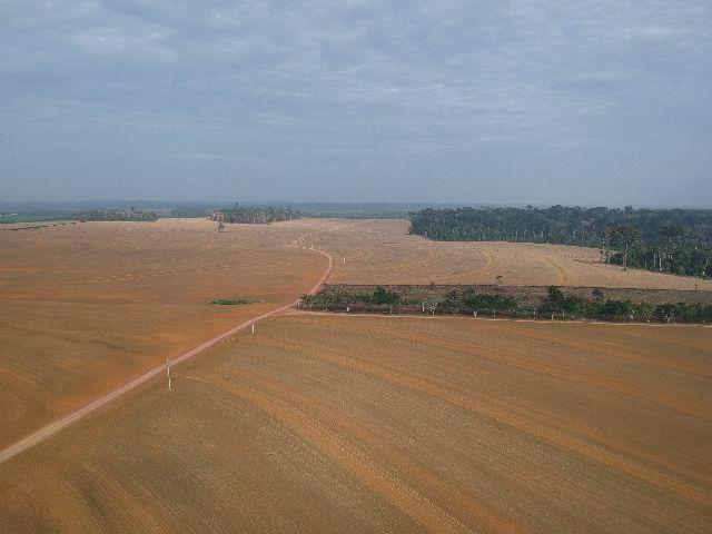 Vende-se fazenda de soja em Santarém-PA
