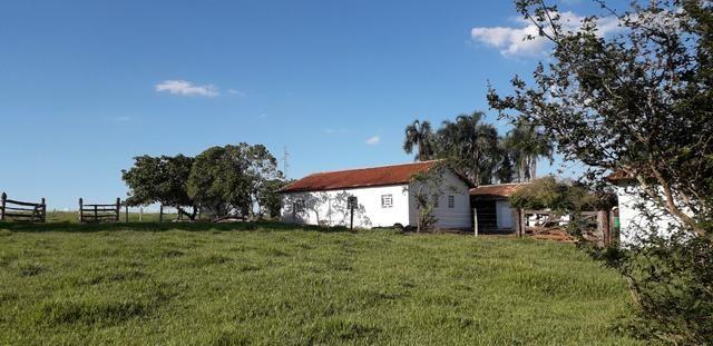 Chácara à venda de 1 alqueires e meio no município de Firminópolis - Foto 15