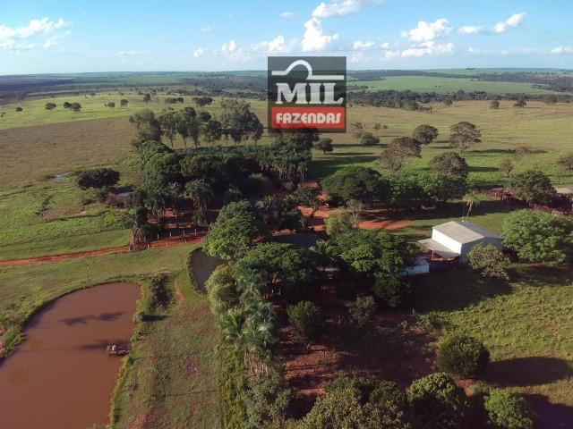 Fazenda dupla apitidão 200 Alqueires ( 968 hectares ) Itajá-GO - Foto 16
