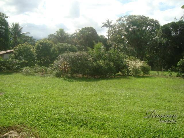 Linda Área Rural com 100 alqueires em Antonina/Paraná - Foto 3