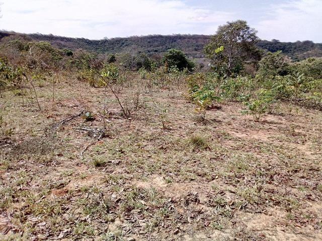Venda de Fazenda, 650 hectares, Guiratinga - MT - Foto 6