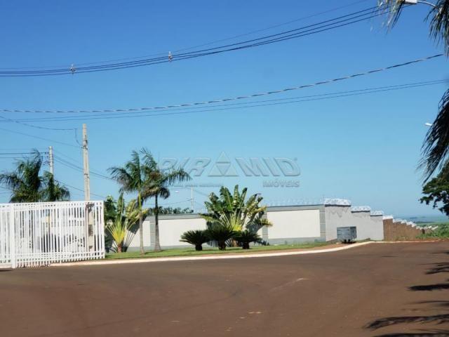 Terreno à venda em Vereador mario arantes ferreira, Brodowski cod:V150674 - Foto 6