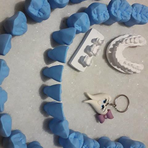 Promoção Kit Completo Macro Modelo Dente Anatomia Perfeita