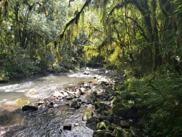 Belíssimo imóvel com rio e com muita privacidade! - Foto 12