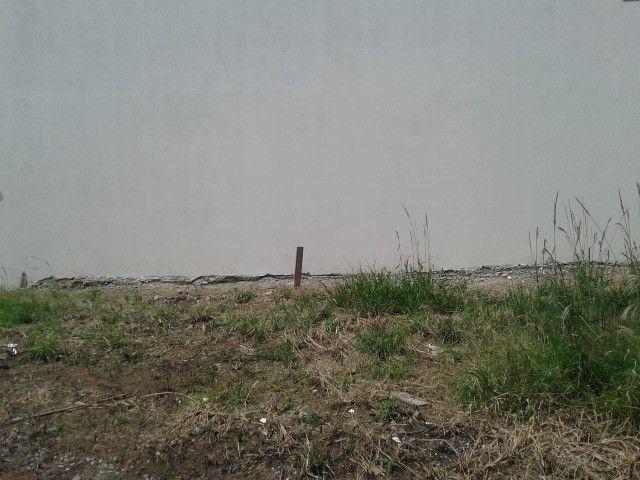 Terreno ótimo no parque da fazenda 201 mts 9 metros de frente - Foto 5