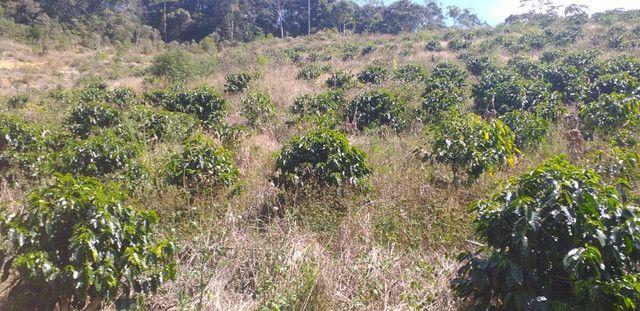 Sitio perto china parque 15.000 60mil outro 10,000 50mil os dois 95mil arace pedra azul - Foto 16