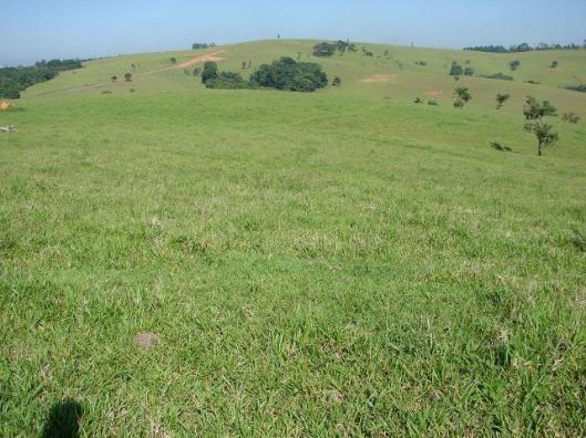 Sorocaba Região Sitio 30 Alqueires