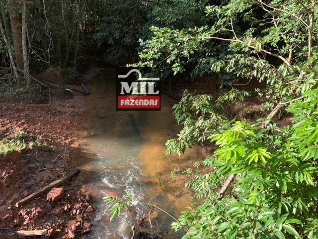 Fazenda dupla apitidão 200 Alqueires ( 968 hectares ) Itajá-GO - Foto 15